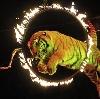 Цирки в Гороховце
